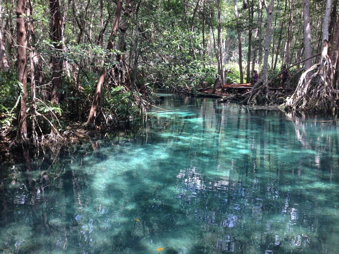 Yalahau Lagoon in Isla Holbox, Mexico