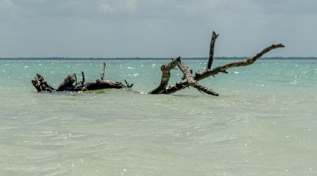 Isla Holbox-35