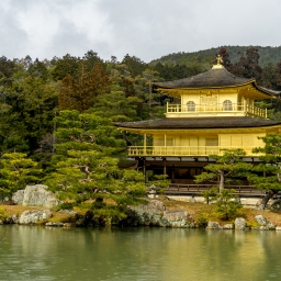 Kyoto: Two temples and a tea room